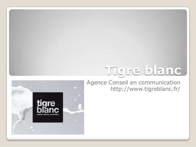 Tigre blancAgence Conseil en communication        http://www.tigreblanc.fr/