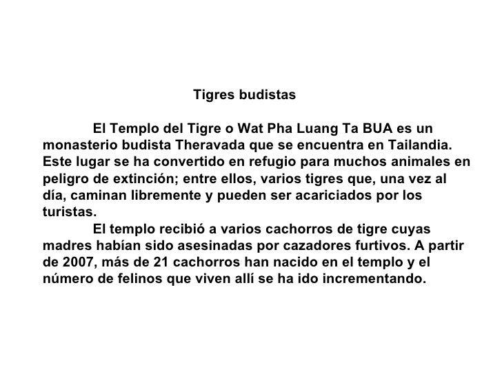 Tigres budistas          El Templo del Tigre o Wat Pha Luang Ta BUA es un monasterio budista Theravada que se encuentra en...