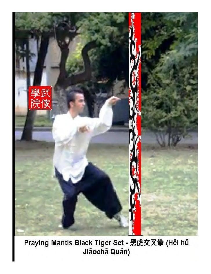 Detallado informe sobre el Estilo de Kung Fu               Mantis 7 EstrellasY, pormenorizada informaciòn sobre el esquema...