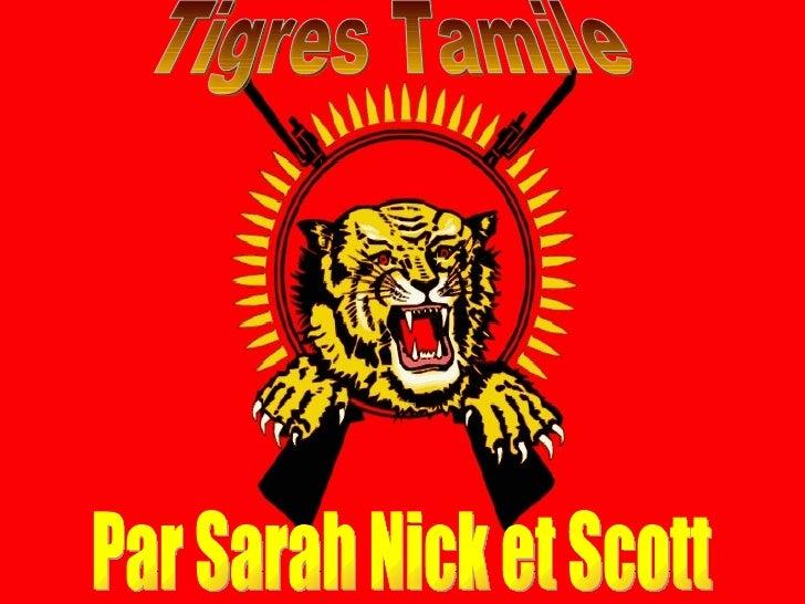 Tigres Tamile Par Sarah Nick et Scott
