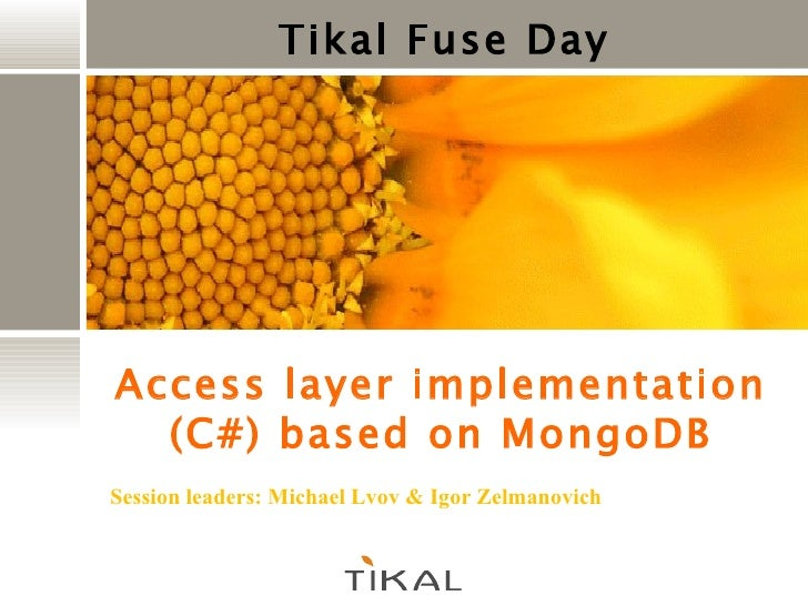 Tikal Fuse Day Access layer implementation (C#) based on MongoDB Session leaders: Michael Lvov & Igor  Zelmanovich