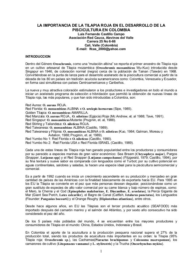 LA IMPORTANCIA DE LA TILAPIA ROJA EN EL DESARROLLO DE LA PISCICULTURA EN COLOMBIA Luis Fernando Castillo Campo Asociación ...