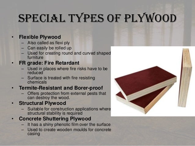 Types Of Commercial Timber