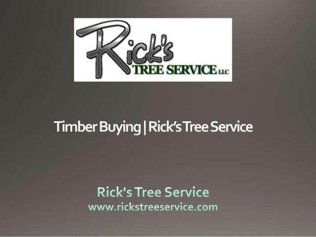Timber Buying | Rick's Tree Service