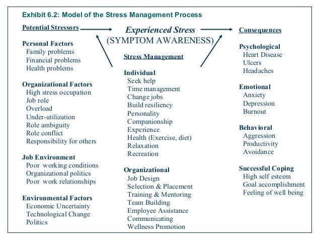 The Coping Skills Workbook Lisa M Schab 1996 Spiral Paperback Teaches 9 Skills