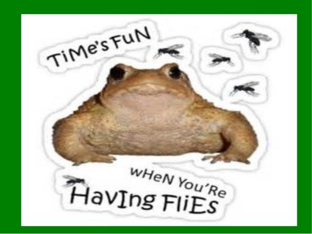 Time is fun
