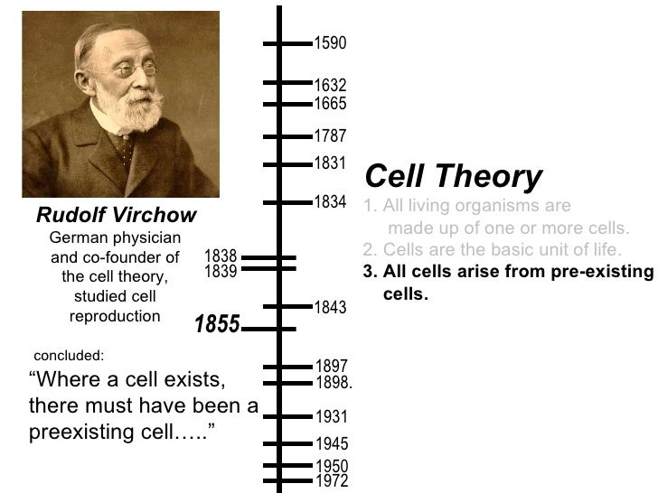 an analysis of the historical development of cell theory Towards a sociological theory of the mobile phone  the innovative potential of cell phone  it still fundamentally belongs to the historical era of.