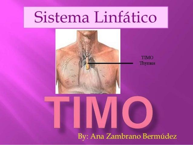 By: Ana Zambrano Bermúdez Sistema Linfático