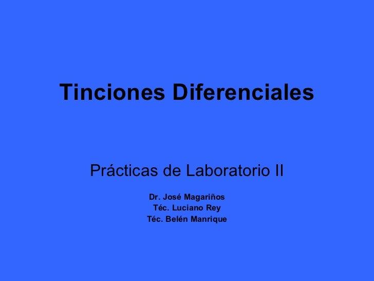 Tinciones Diferenciales Prácticas de Laboratorio II Dr. José Magariños Téc. Luciano Rey Téc. Belén Manrique