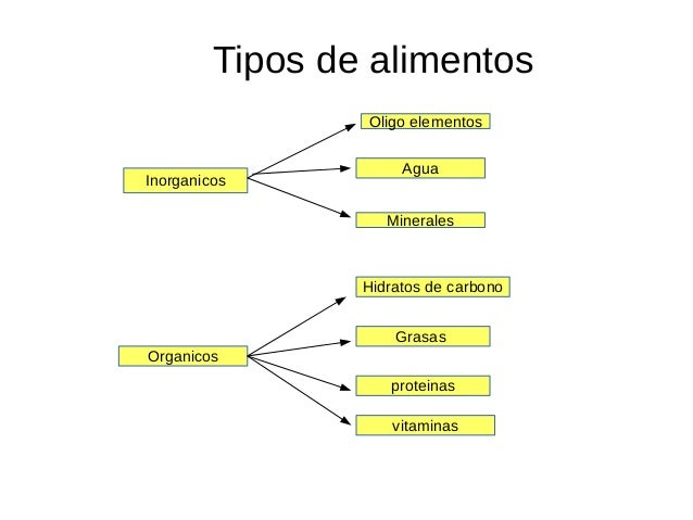 grafica de tipos de alimentos