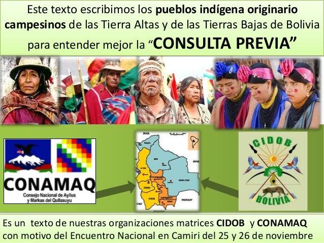 Este texto escribimos los pueblos indígena originario campesinos de las Tierra Altas y de las Tierras Bajas de Bolivia par...