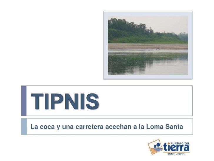 TIPNIS<br />La coca y una carretera acechan a la Loma Santa<br />