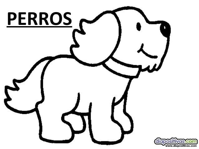 Tipos de-perros-diapositivas
