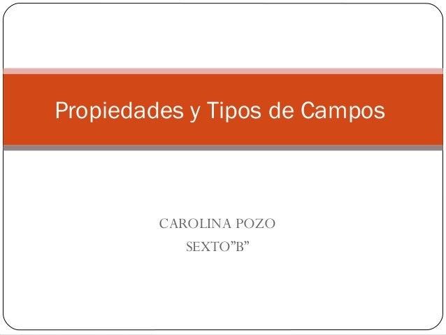 """CAROLINA POZO SEXTO""""B"""" Propiedades y Tipos de Campos"""