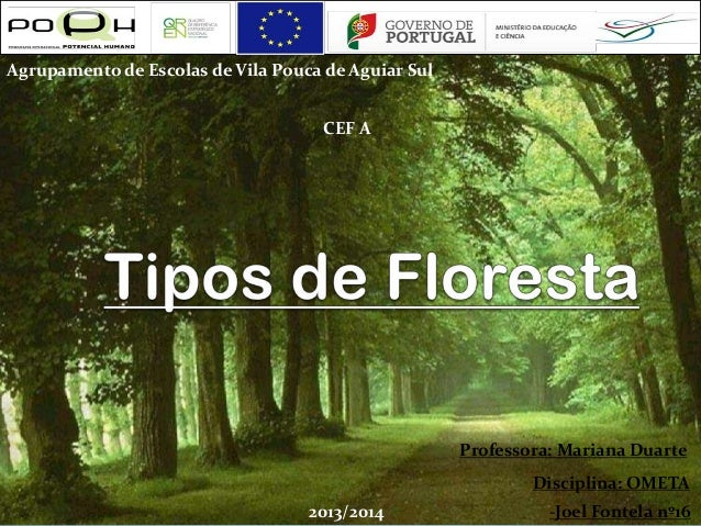 Agrupamento de Escolas de Vila Pouca de Aguiar Sul CEF A  Professora: Mariana Duarte Disciplina: OMETA 2013/2014  -Joel Fo...