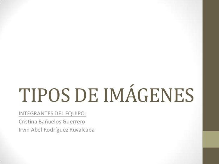 TIPOS DE IMÁGENES<br />INTEGRANTES DEL EQUIPO:<br />Cristina Bañuelos Guerrero<br />Irvin Abel Rodríguez Ruvalcaba <br />