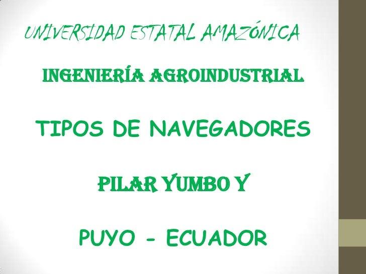 UNIVERSIDAD ESTATAL AMAZÓNICA  INGENIERÍA AGROINDUSTRIAL TIPOS DE NAVEGADORES       PILAR YUMBO Y     PUYO - ECUADOR