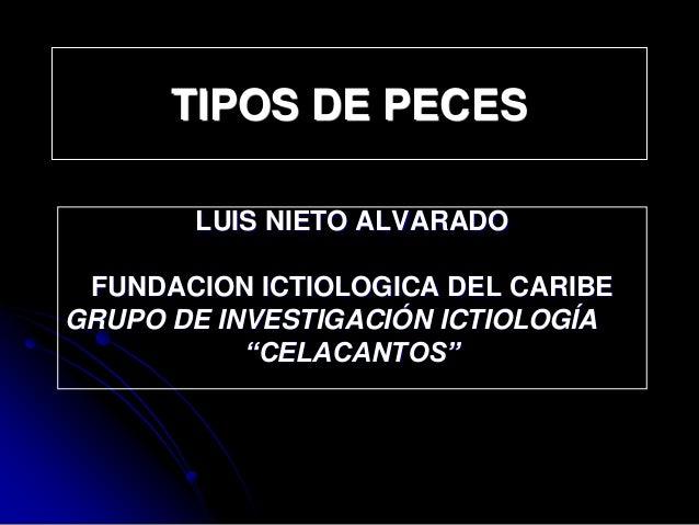 """TIPOS DE PECES LUIS NIETO ALVARADO FUNDACION ICTIOLOGICA DEL CARIBE GRUPO DE INVESTIGACIÓN ICTIOLOGÍA """"CELACANTOS"""""""