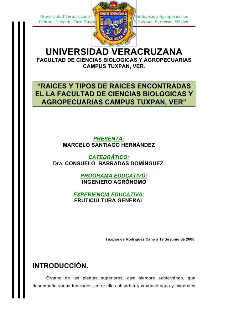 Universidad Veracruzana – Facultad de Ciencias Biológicas y Agropecuarias   Campus Tuxpan., Carr. Tuxpan – Tampico Km. 7.5...