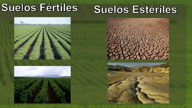 Tipos de suelo - Clases de suelo ...