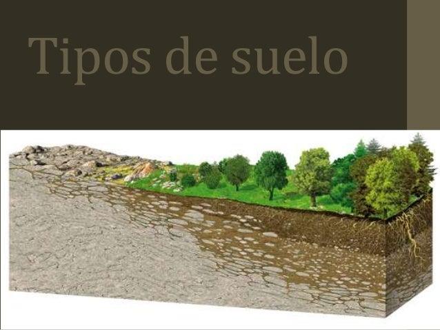 Tipos de suelos paisajismo - Clases de suelo ...