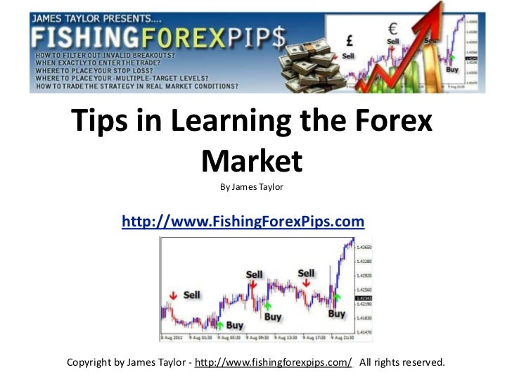 Tips in learning the forex market