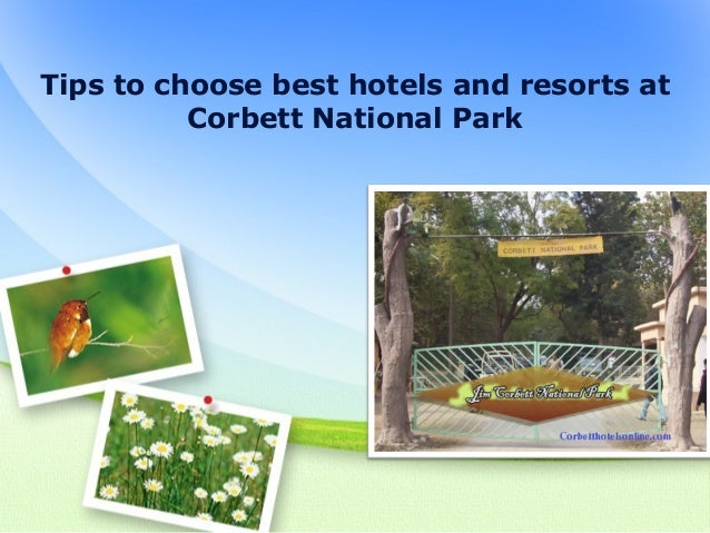 Tips to choose best hotels and resorts at corbett national park