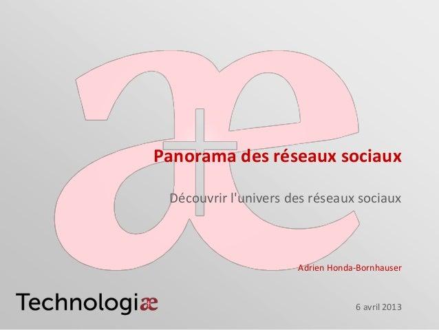 Panorama des réseaux sociaux_Adrien Honda-Bornhauser_13ème rencontre des Tisserands_06 avril 2013