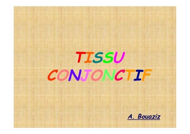 TISSUCONJONCTIF       A. Bouaziz