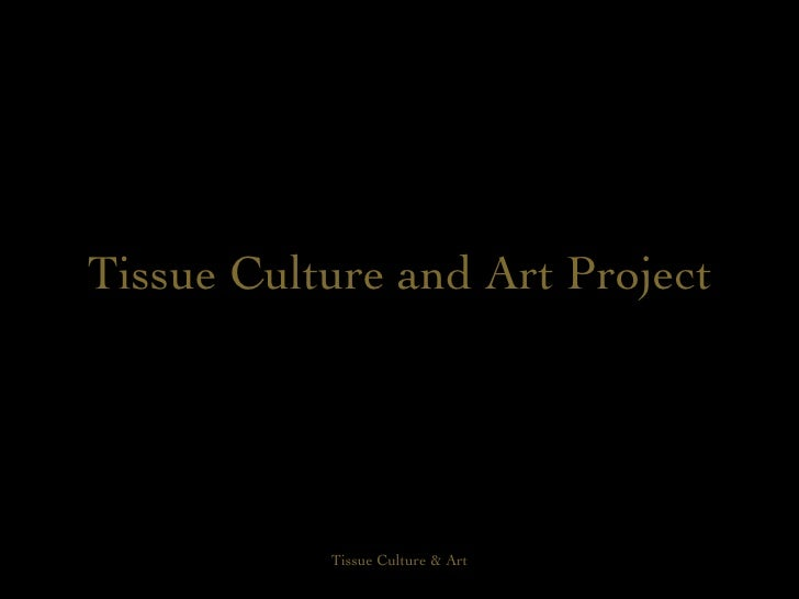 Tissue Culture and Art Project
