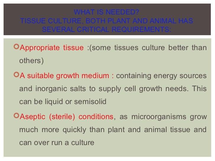 plant growth regulators in plant tissue culture pdf