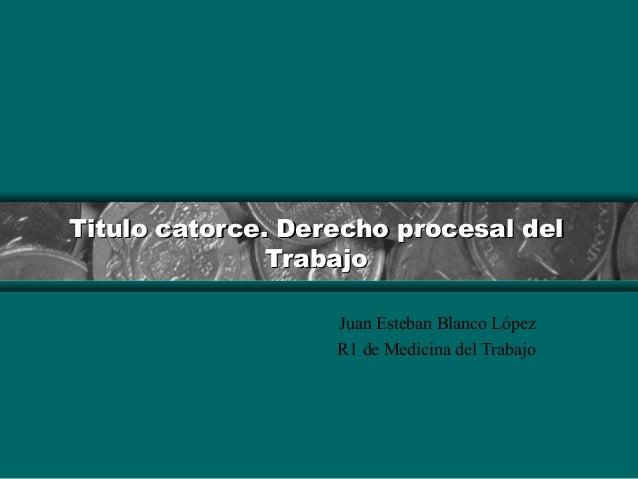 Titulo catoTitulo catorce. Derecho procesal delrce. Derecho procesal del TrabajoTrabajo Juan Esteban Blanco López R1 de Me...