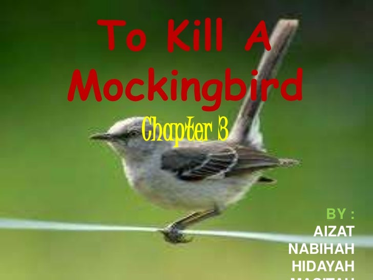 To Kill AMockingbird   Chapter 3                    BY :                  AIZAT               NABIHAH               HIDAYAH