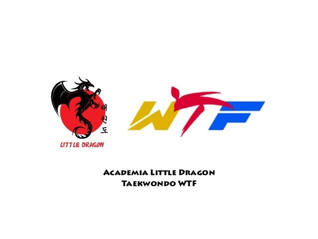 Academia Little Dragon Taekwondo WTF