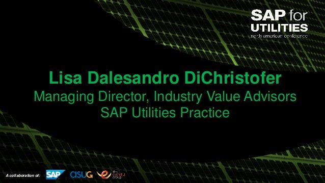 A collaboration of: Lisa Dalesandro DiChristofer Managing Director, Industry Value Advisors SAP Utilities Practice