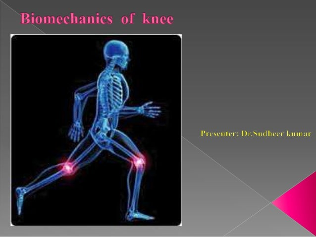   The knee is a mechanism of three joints and Four bones - the femur, tibia, patella and fibula    Interact in separate ...