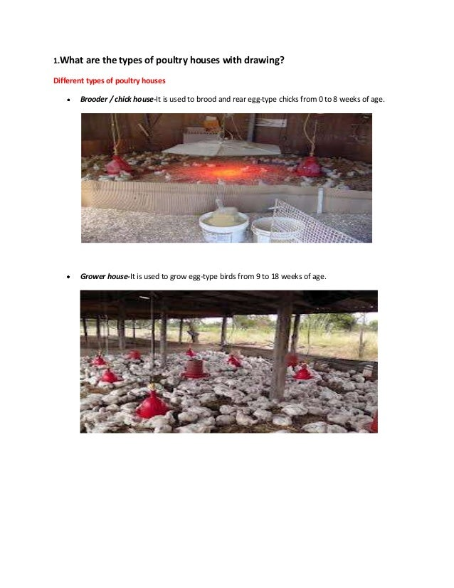 1.What are the types of poultry houses with drawing? Different types of poultry houses Brooder / chick house-It is used to...