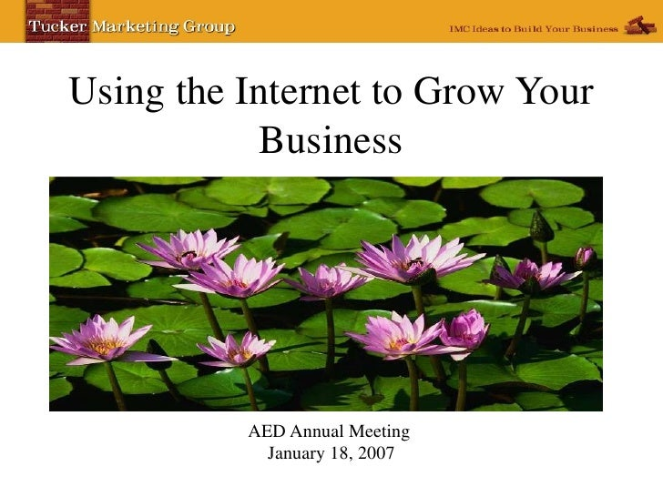 Using the Internet to Grow Your Business AED Annual Meeting  January 18, 2007