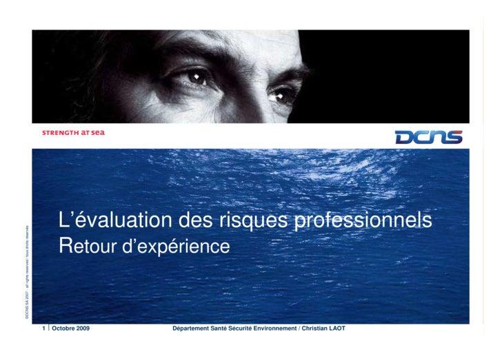 L'évaluation des risques professionnels ©DCNS SA 2007 - all rights reserved / tous droits réservés                        ...