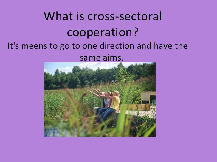 What is cross-sectoral cooperation? <ul><li>It's  m e e ns to go to one direction and have the same aim s . </li></ul><ul>...