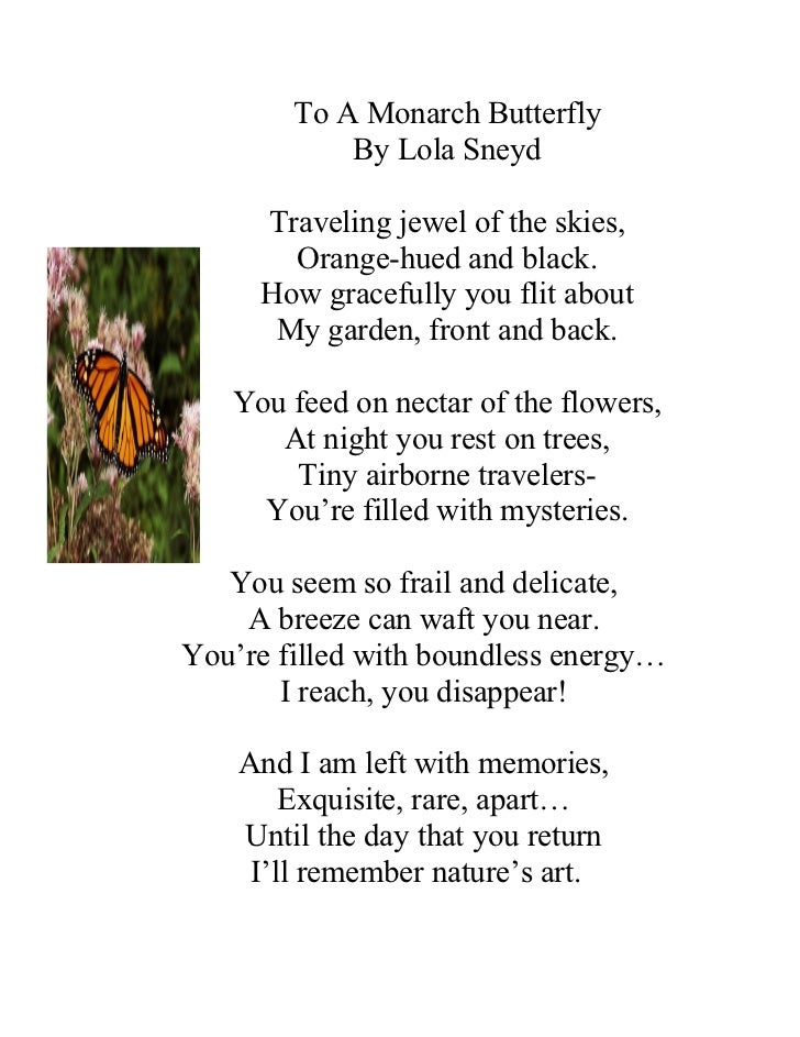 To A Monarch Butterfly            By Lola Sneyd     Traveling jewel of the skies,       Orange-hued and black.     How gra...