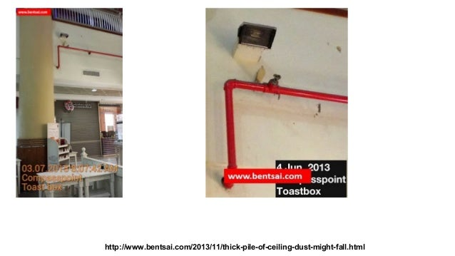 http://www.bentsai.com/2013/11/thick-pile-of-ceiling-dust-might-fall.html