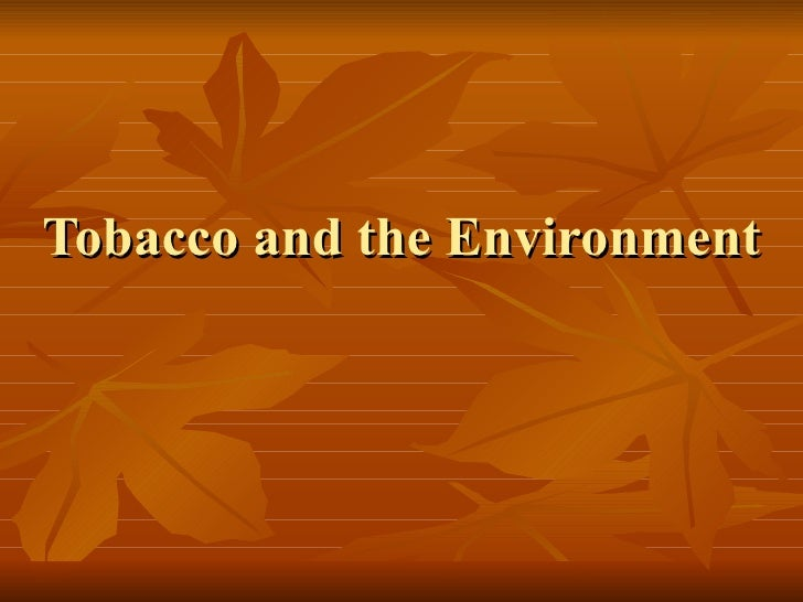 Tobacco And The Environment Presentation