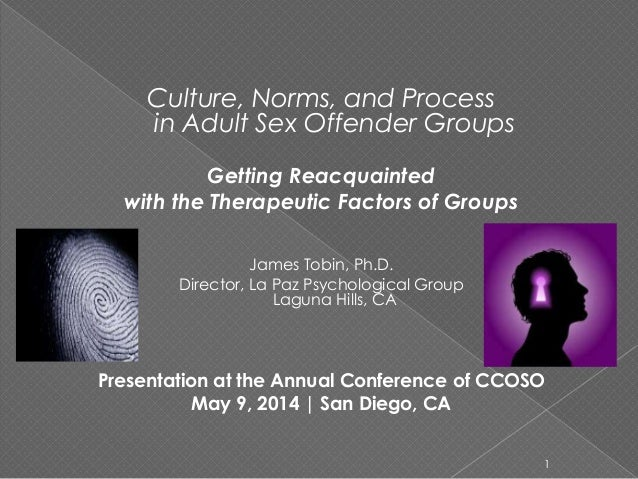 Culture, Norms, and Process in Adult Sex Offender Groups Getting Reacquainted with the Therapeutic Factors of Groups James...