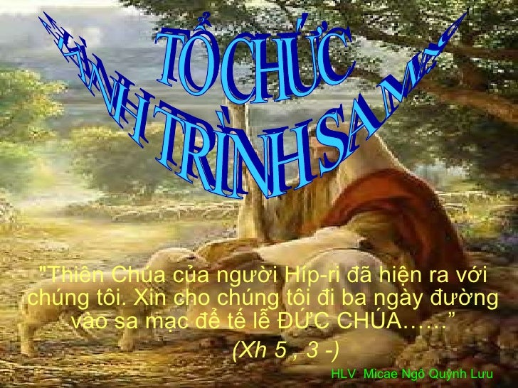 To Chuc  Hanh Trinh Sa Mac 2009