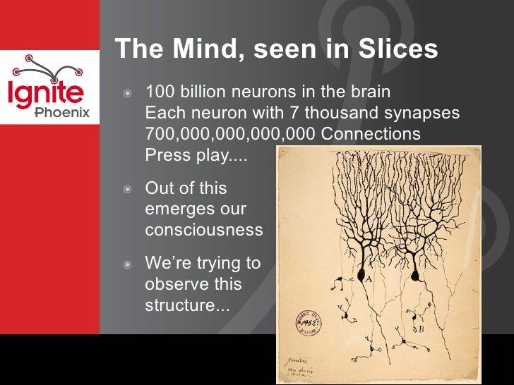 The Mind, seen in Slices               100 billion neurons in the brain           ๏               Each neuron with 7 thous...