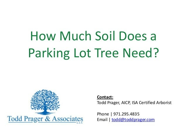How Much Soil Does a Parking Lot Tree Need? Contact: Todd Prager, AICP, ISA Certified Arborist Phone | 971.295.4835 Email ...