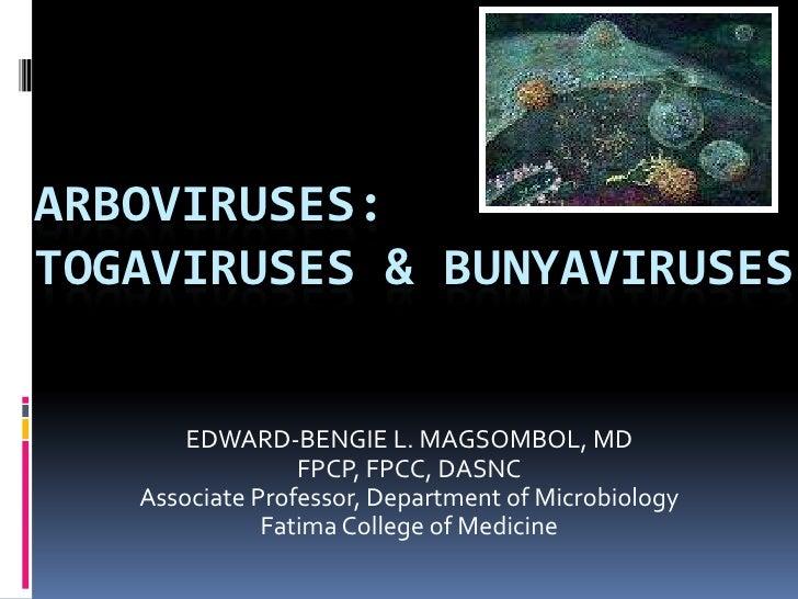 ARBOVIRUSES:TOGAVIRUSES & BUNYAVIRUSES<br />EDWARD-BENGIE L. MAGSOMBOL, MD<br />FPCP, FPCC, DASNC<br />Associate Professor...