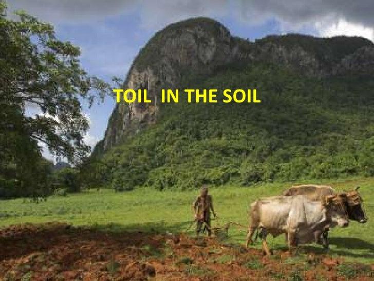 TOIL IN THE SOIL