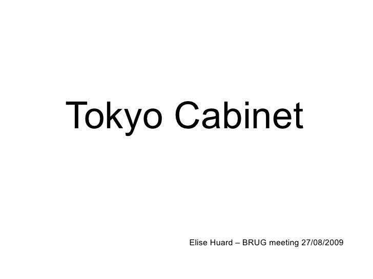 Tokyo Cabinet Elise Huard – BRUG meeting 27/08/2009